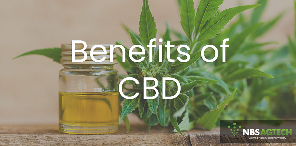 Benefits of CBD - NBS AGTECH LLC